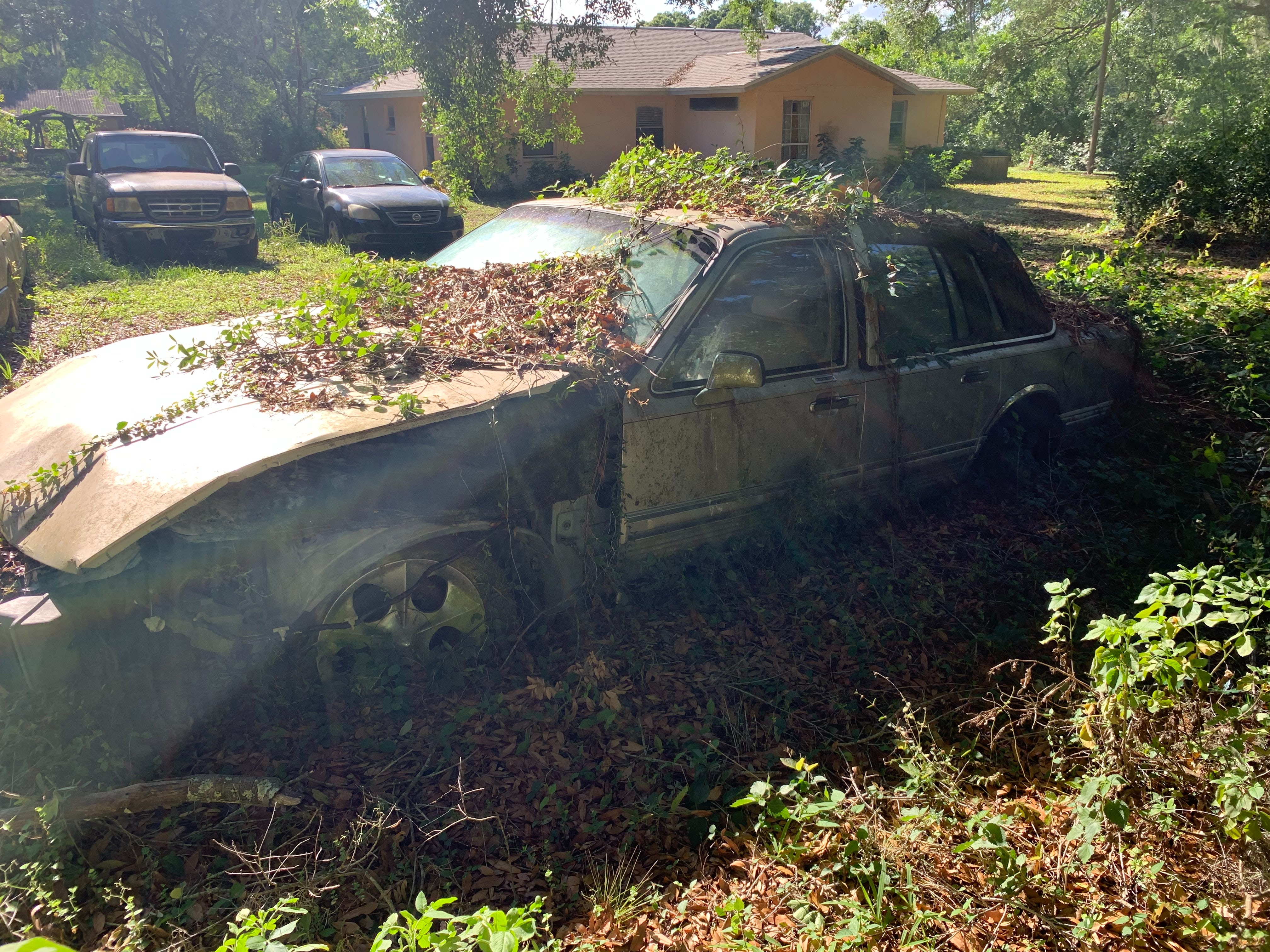 Junk 1991 Lincoln Town Car in Seffner
