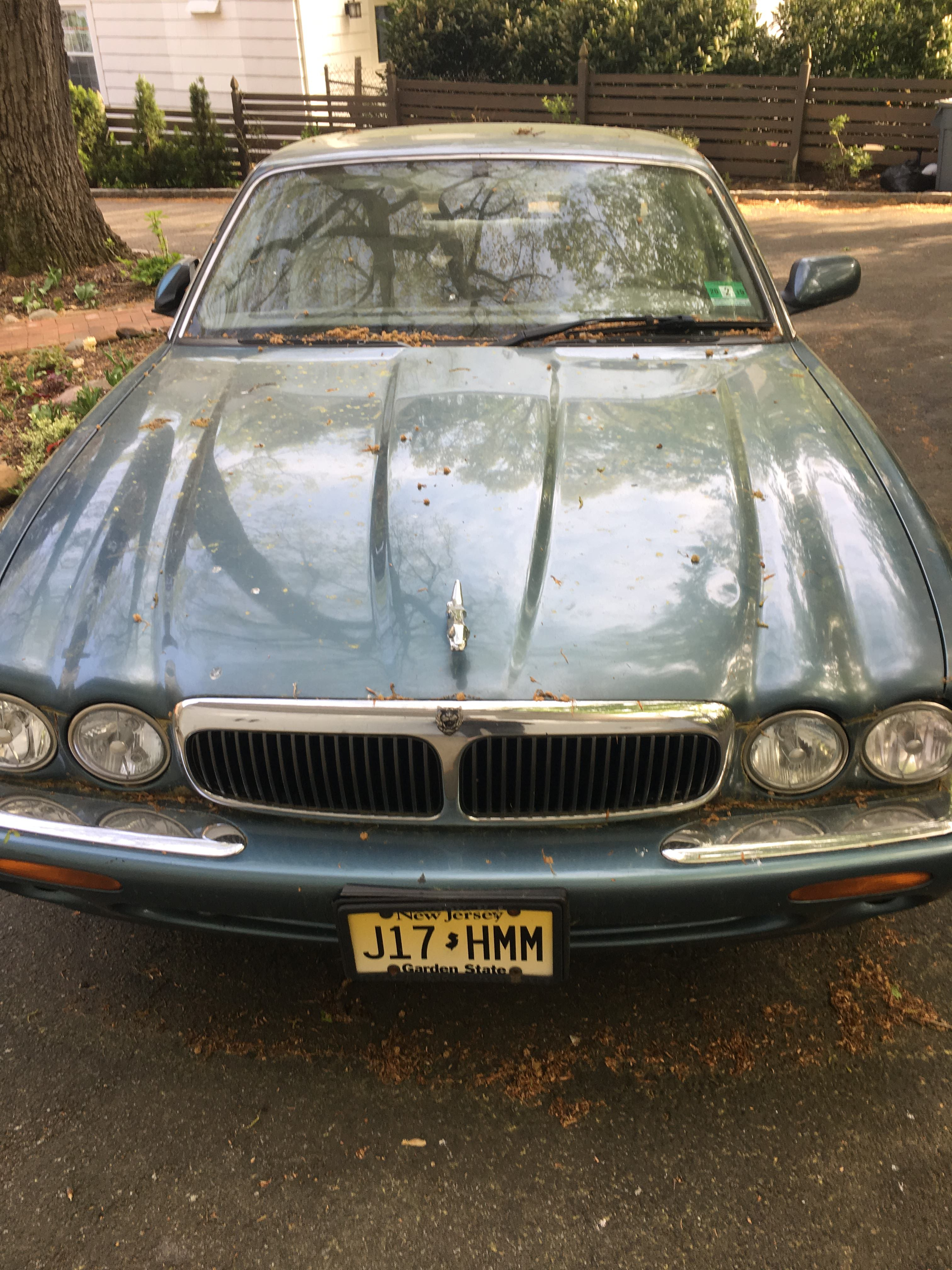 Junk 1999 Jaguar XJ8 in South Orange