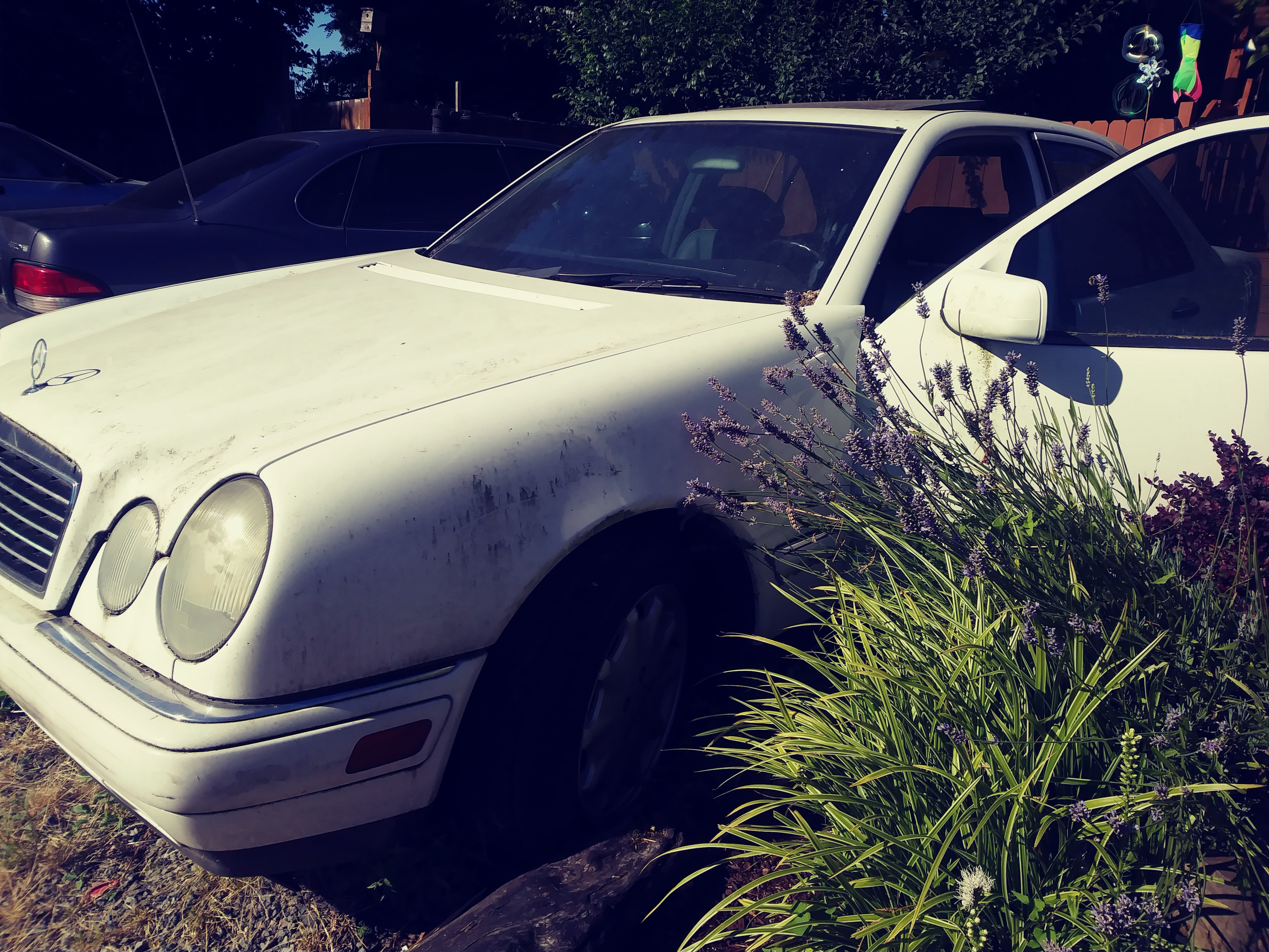 Junk 1999 Mercedes-Benz E in Snohomish