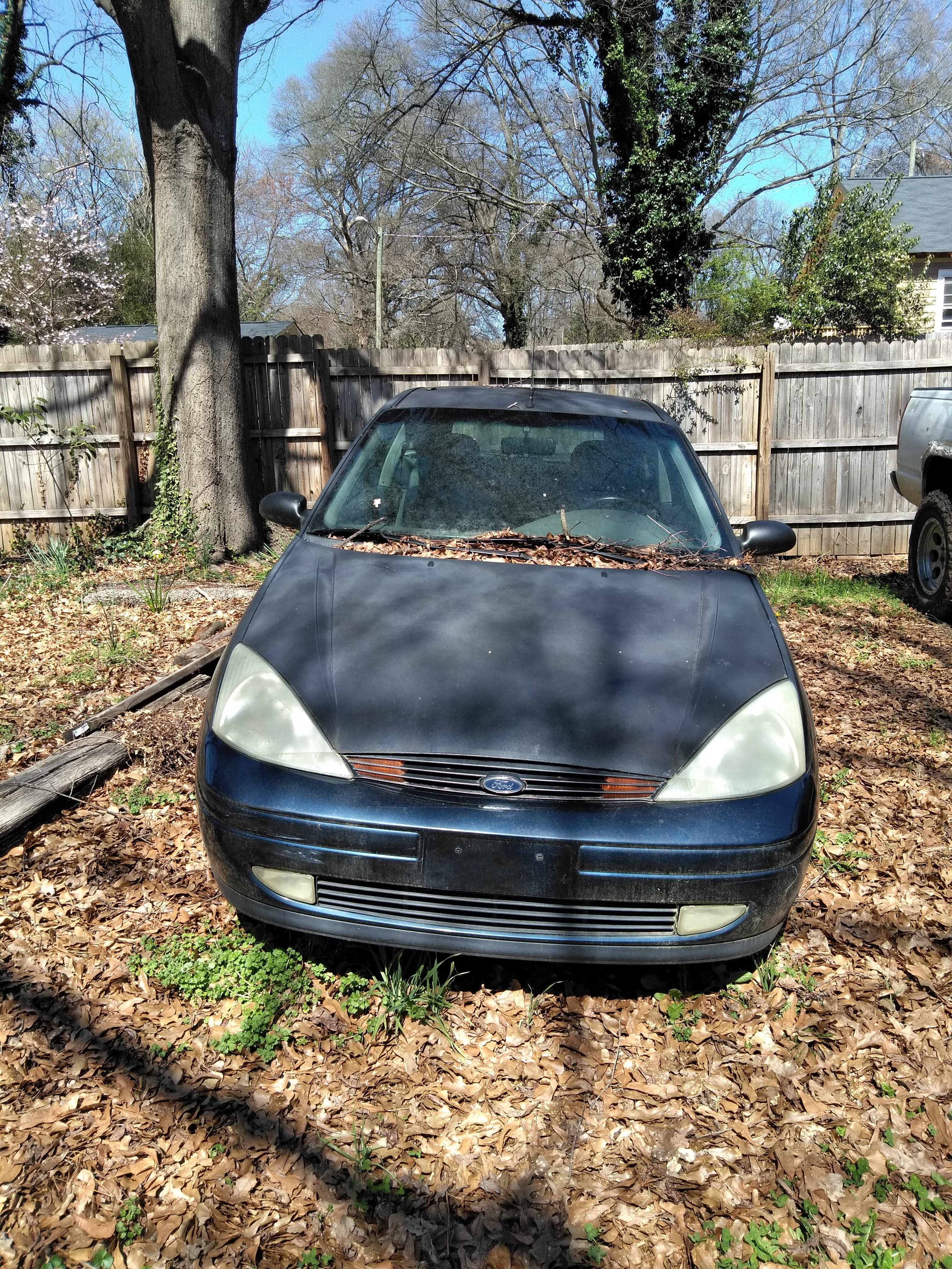 Junk 2000 Ford Focus in Gastonia