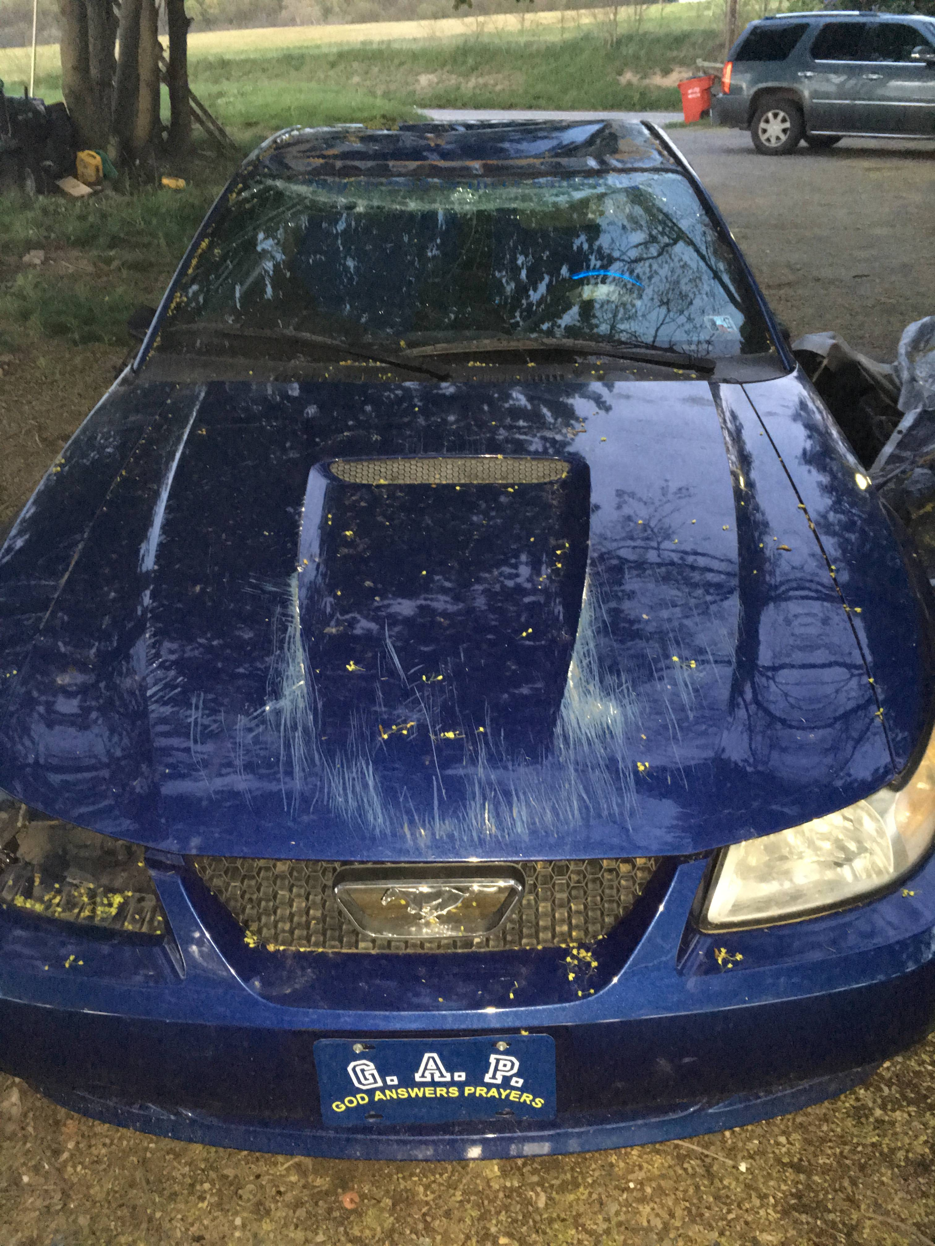 Junk 2000 Ford Mustang in Chambersburg