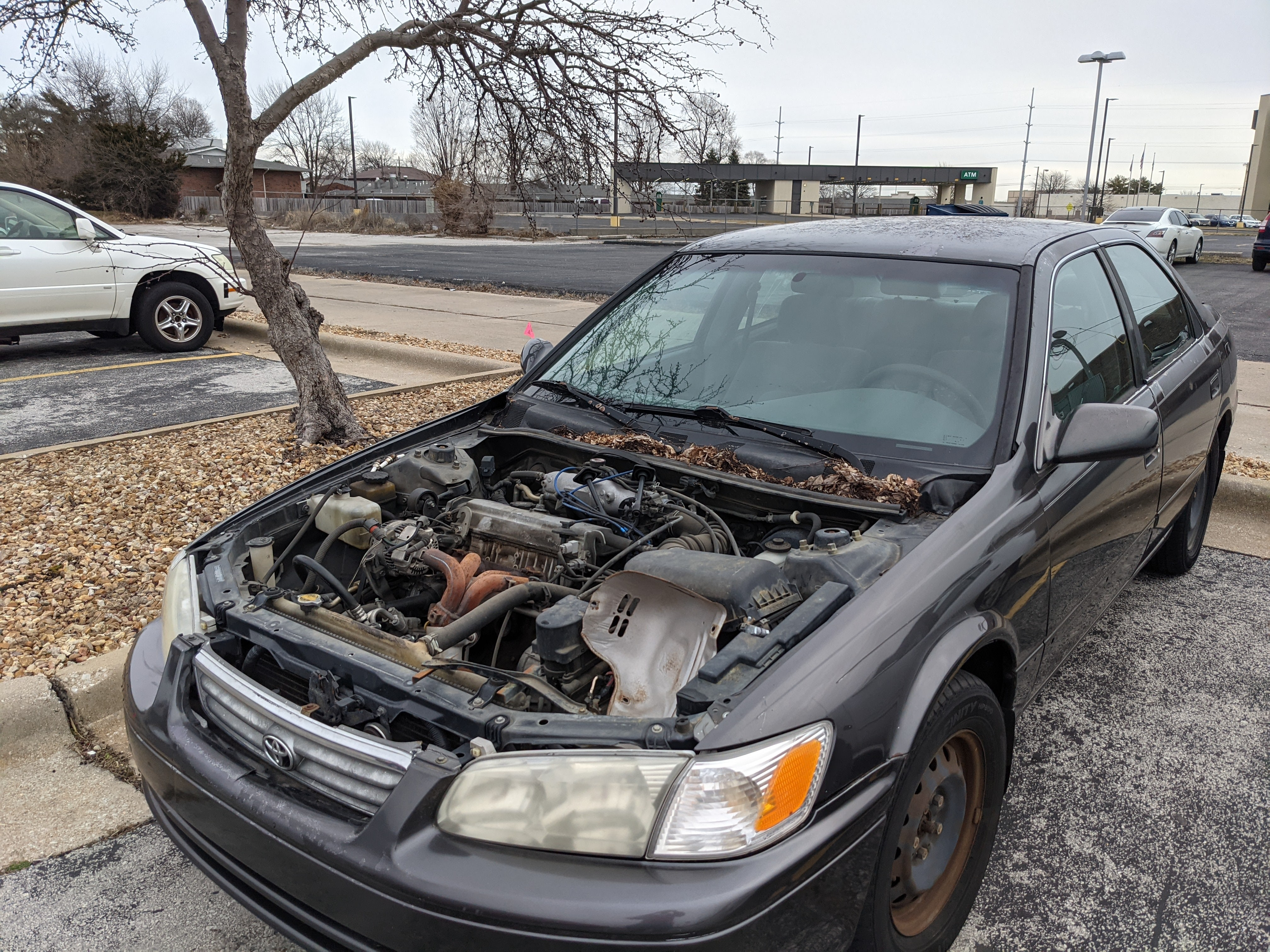 Junk 2000 Toyota Camry in Springfield