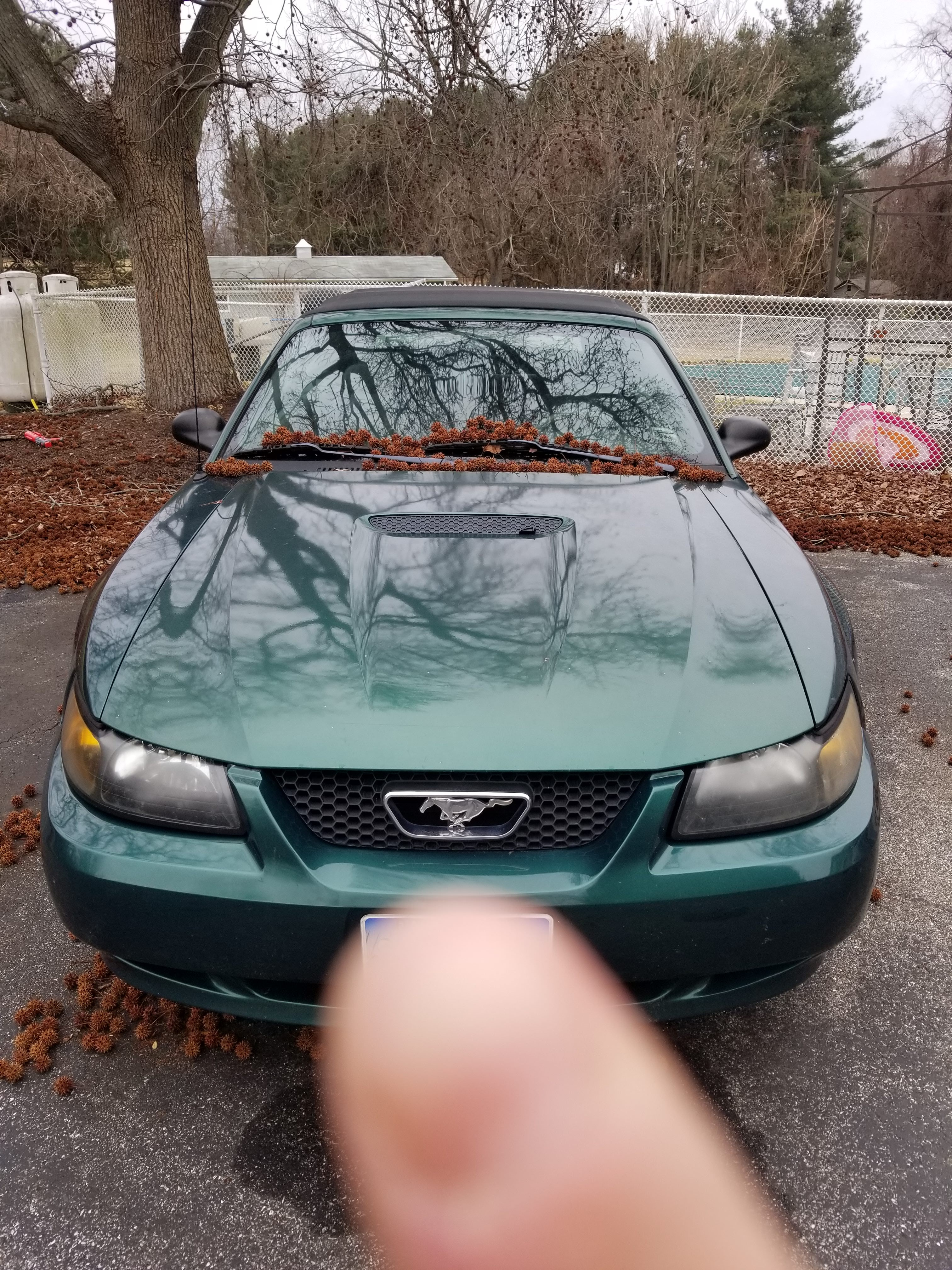 Junk 2001 Ford Mustang in Davidsonville