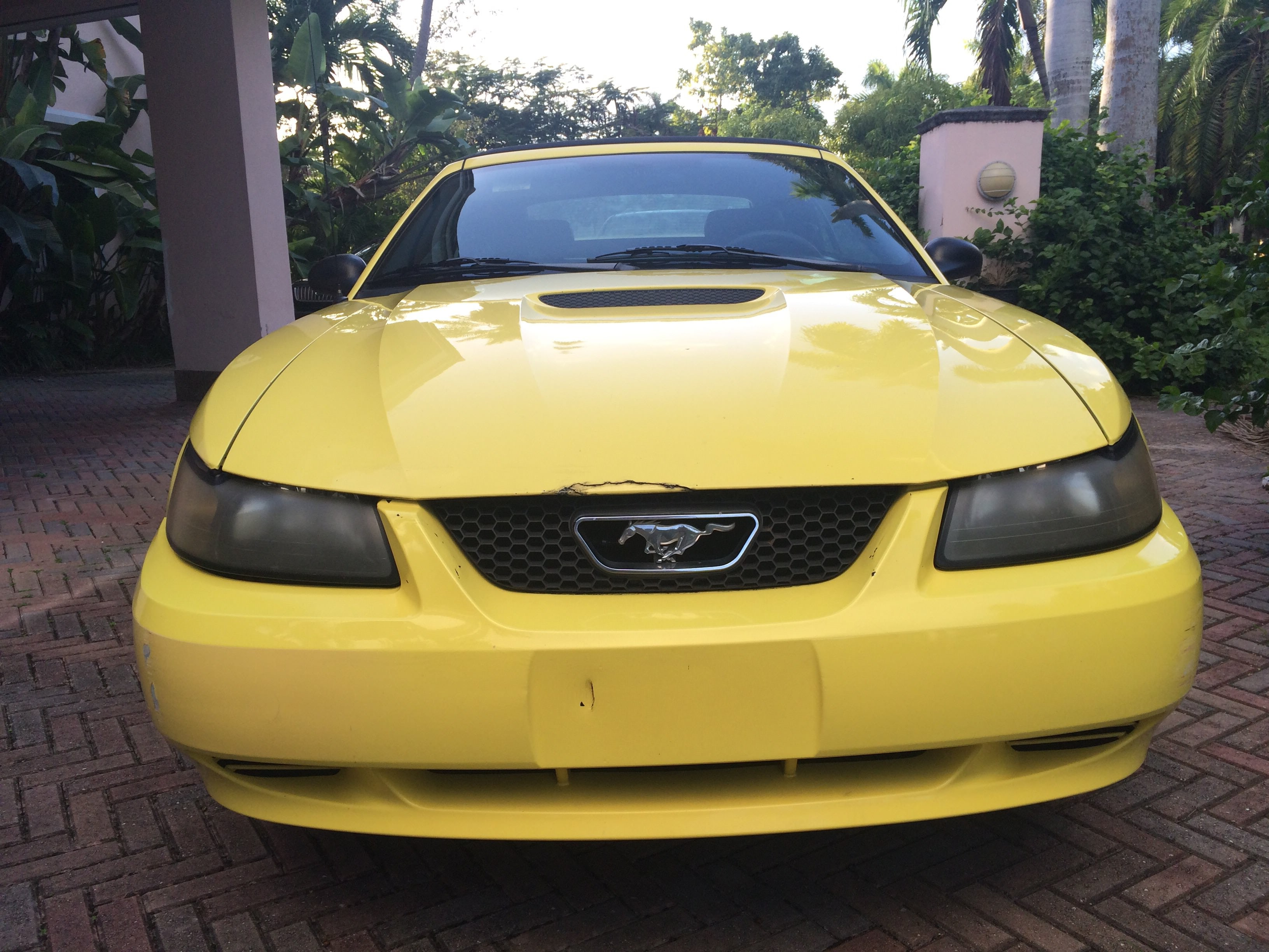 Junk 2001 Ford Mustang in Miami
