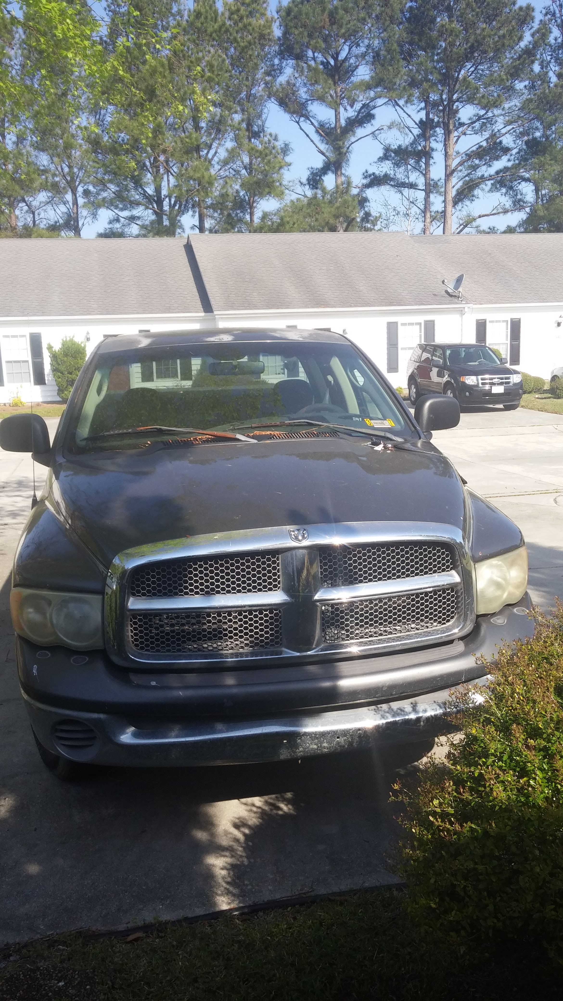 Junk 2002 Dodge RAM 1500 in Havelock