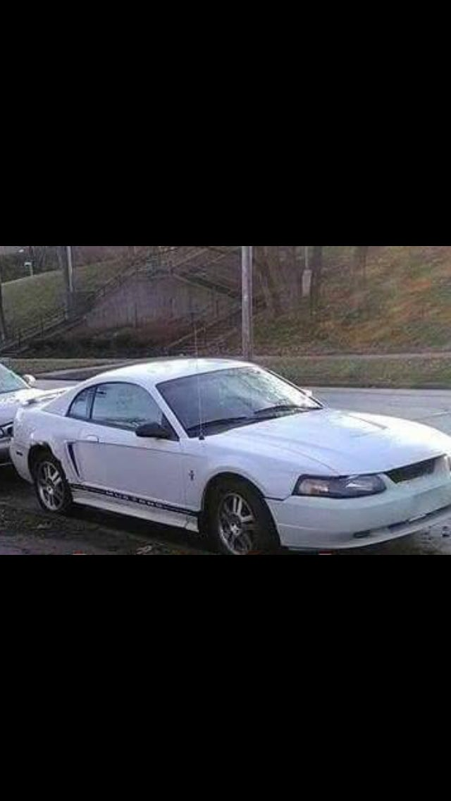 Junk 2003 Ford Mustang in Cleveland