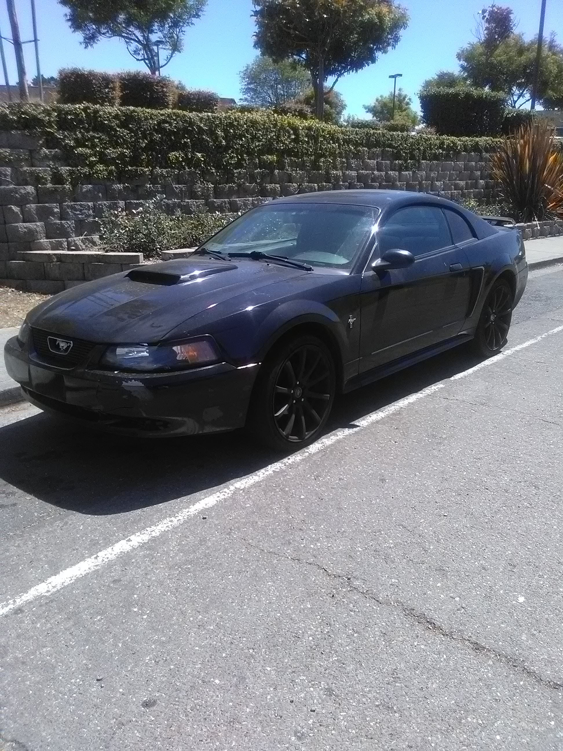 Junk 2003 Ford Mustang in Vallejo