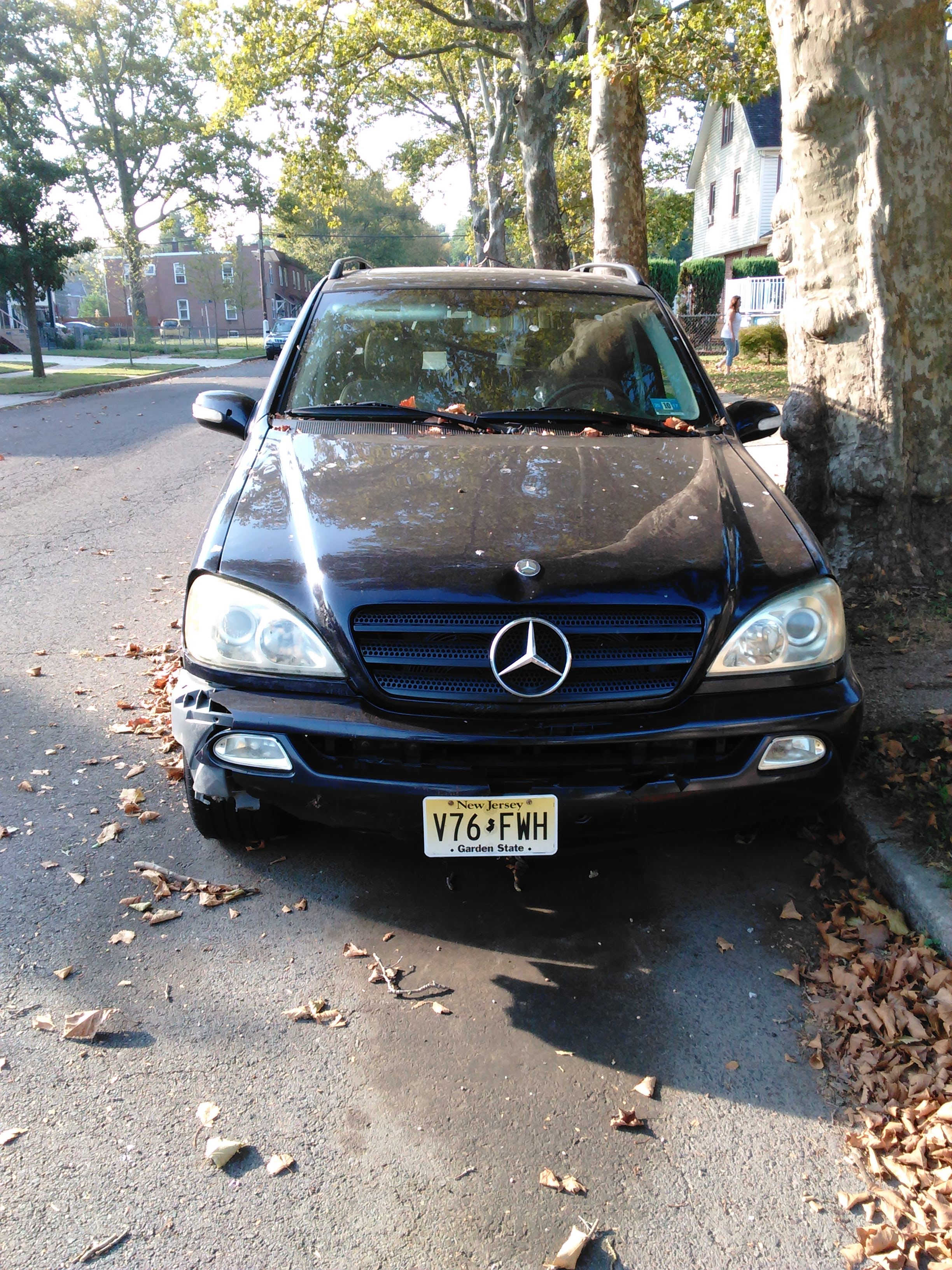Junk 2003 Mercedes-Benz ML in Roebling