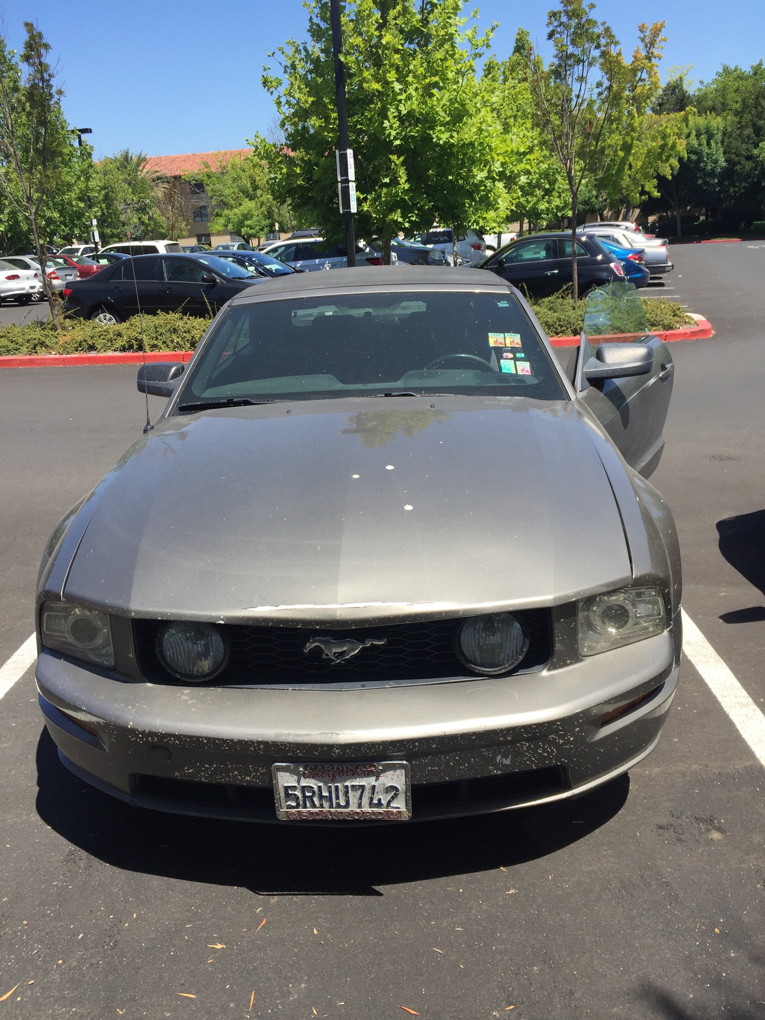 Junk 2005 Ford Mustang in Stanford