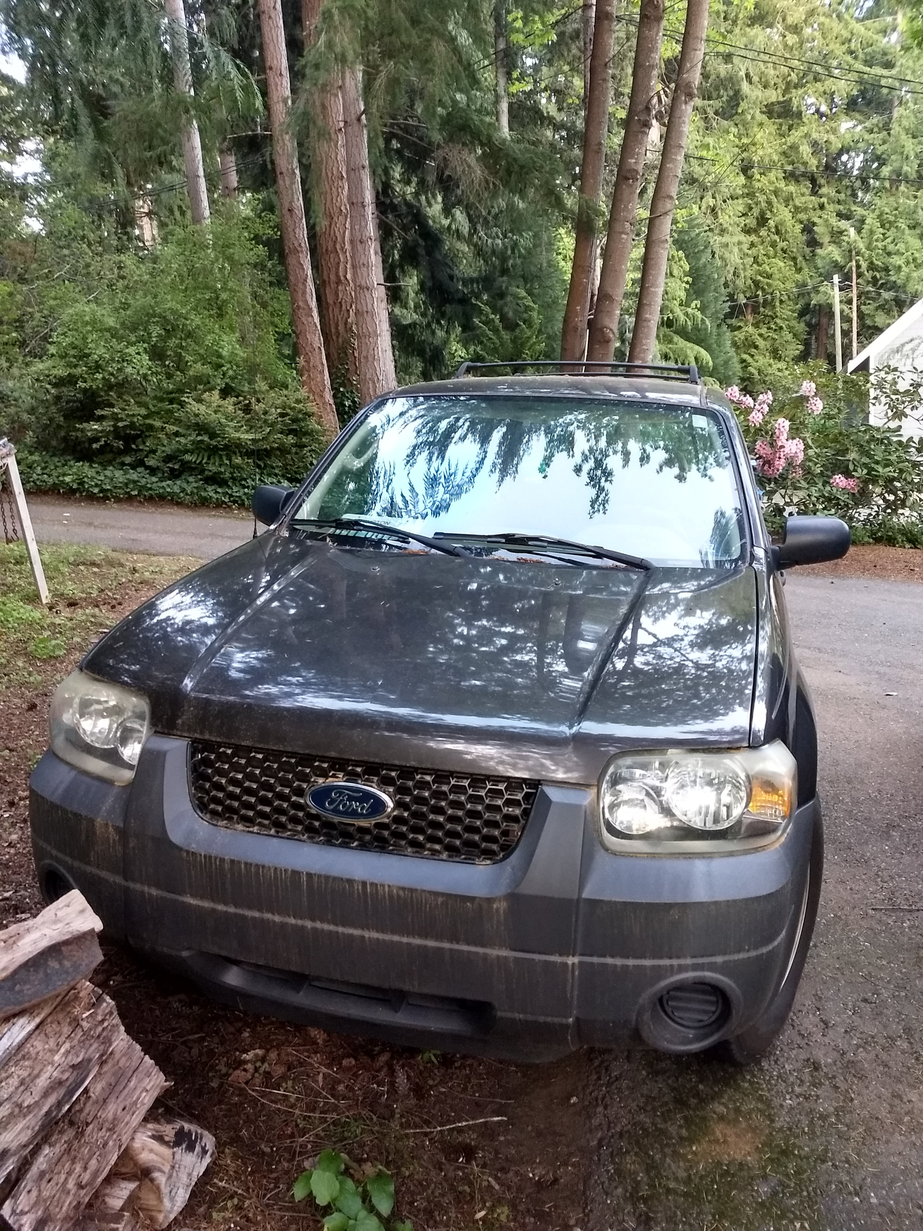 Junk 2007 Ford Escape in Gig Harbor