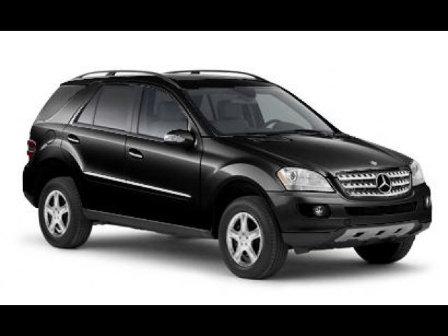 Junk 2008 Mercedes-Benz ML in Dewitt