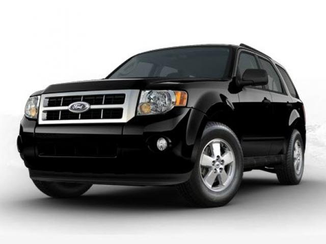 Junk 2009 Ford Escape in Gonzales