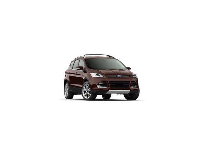 Junk 2013 Ford Escape in Reno